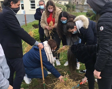Les élèves de CAP ATMFC ont planté leur arbre !